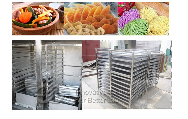 Fruit Chips Dryer Oven|Vegetable Drying Oven Machine
