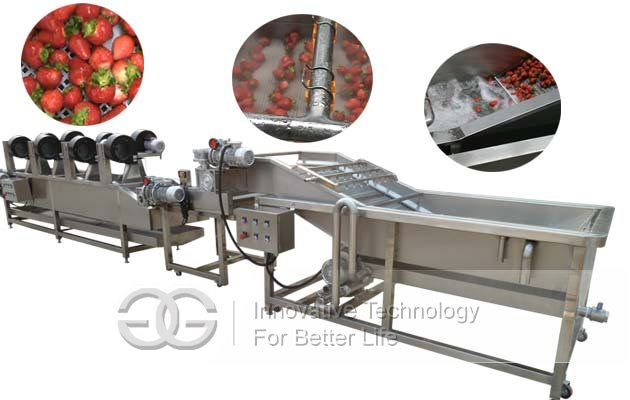 Fruit Vegetable Washer and Dryer Processing Line