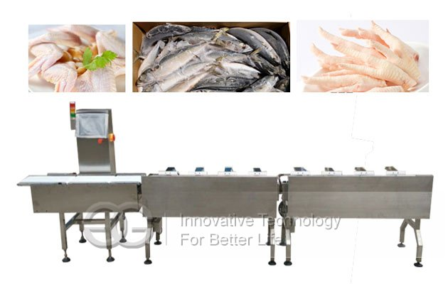Automatic Fish Sorting Grader Machine by Weight
