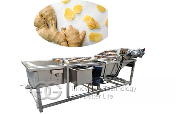 Ginger Chips Processing Line|Ginger Washing and Cutting Machine