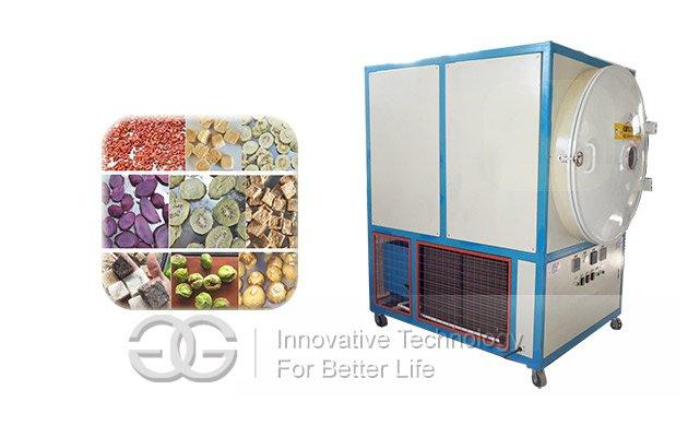 Vacuum Freeze Dryer Machine|Carrot Freeze Dryer Machine