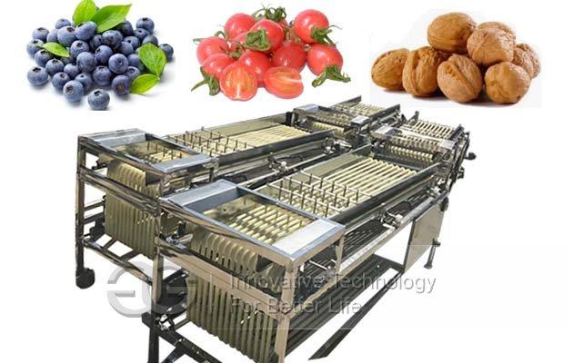 Fruit Size Sorting Machine|Tomato Cherry Berry Grading Machine