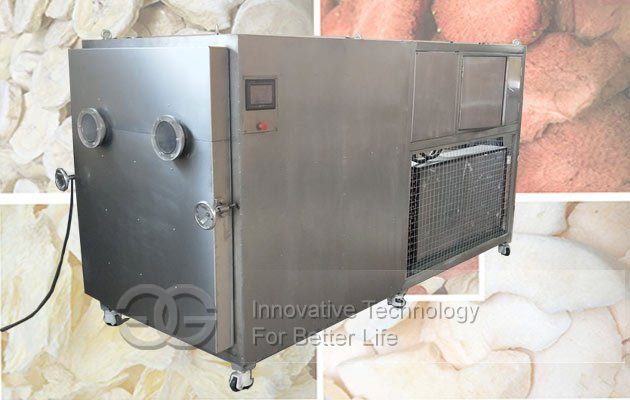 Vacuum Freeze Dryer Machine|Chips Dates Meat Freeze Drying Oven