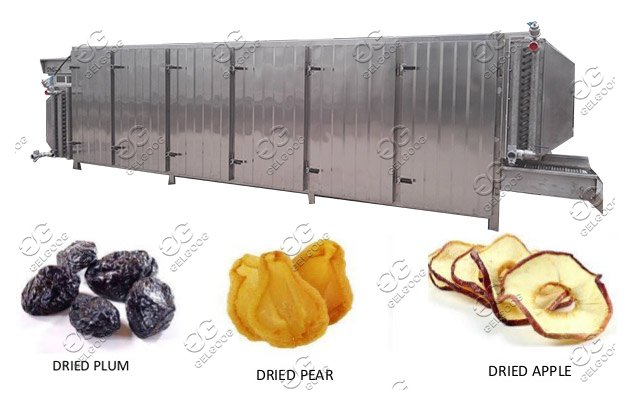 Tunnel Type Fruit Drying Machine|Vegetables Dehydration Machine