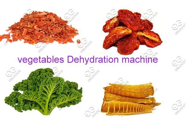 vegetables dehydration machine