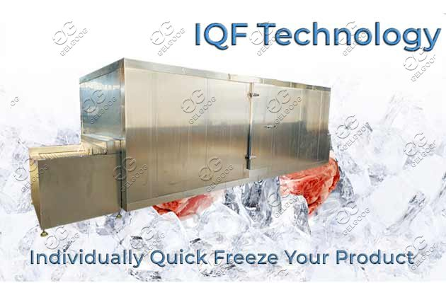 Industrial IQF Machine For Fruits & Vegetables