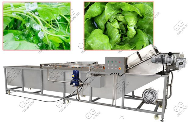 Multi-functional Fruit Leafy Vegetables Air Bubble Washing Machine