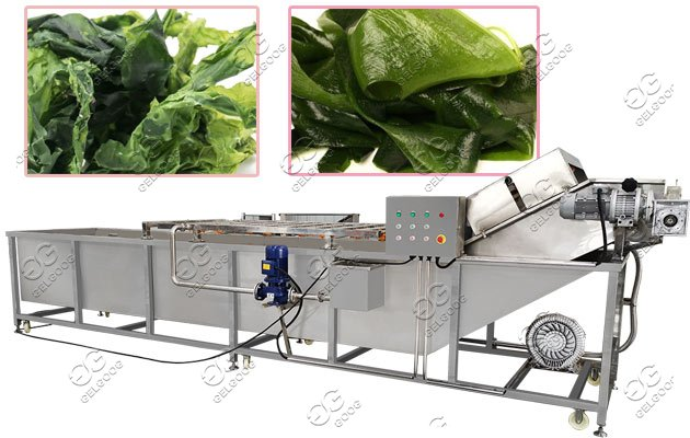 Bubble Type Seaweed Seashell Washing Machine|Aquatic Product Cleaning Machine