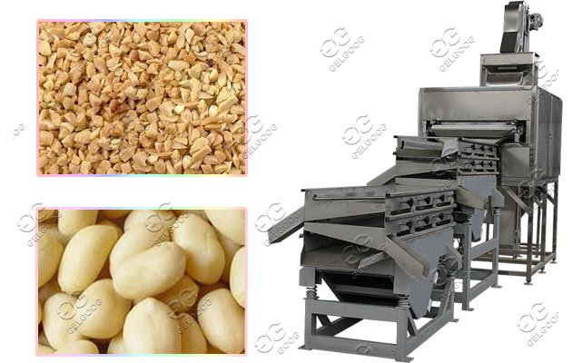Commercial Dry Fruit Chopping Machine|Peanuts Almond Cutting Machine