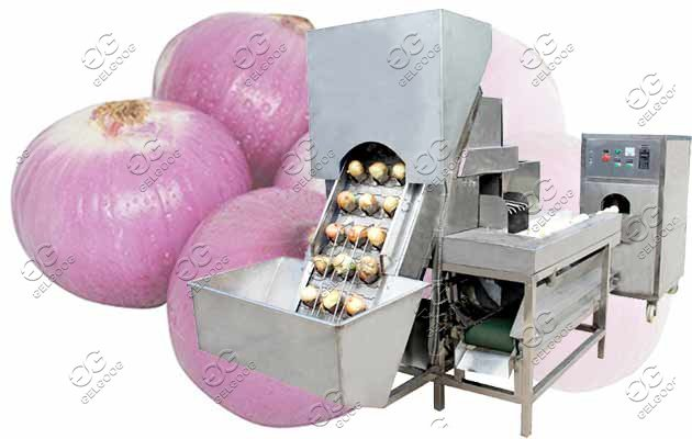 Automatic Onion Peeling Machine|Onion Skin Remover Machine
