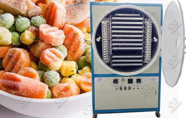 Vacuum Freeze Dryer machine | chips Dates Meat Freeze Drying Oven