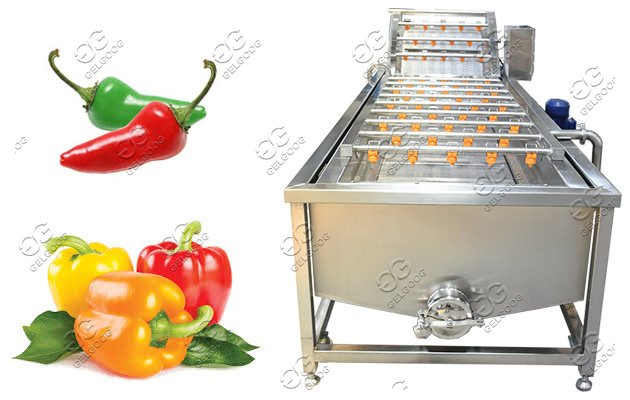 Green Pepper Chili Washing Machine Factory Price