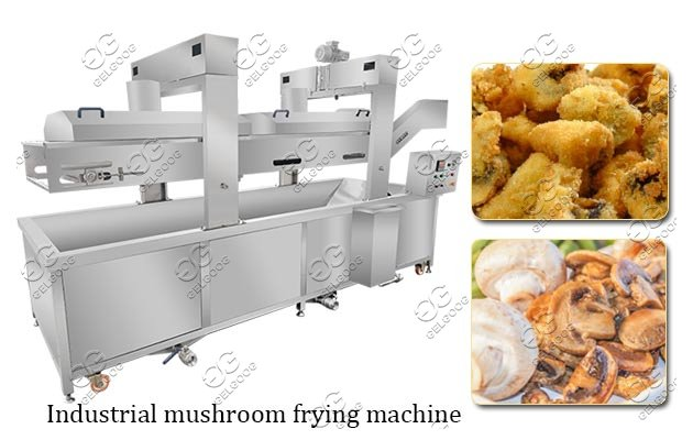 Fried Mushroom Processing Machine Agaric Industrial Fryer For Sale