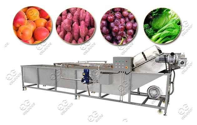 Leafy Vegetables Fruits Industrial Washing Machine