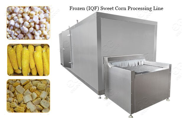 Frozen Sweet Corn IQF Processing Machine Plant