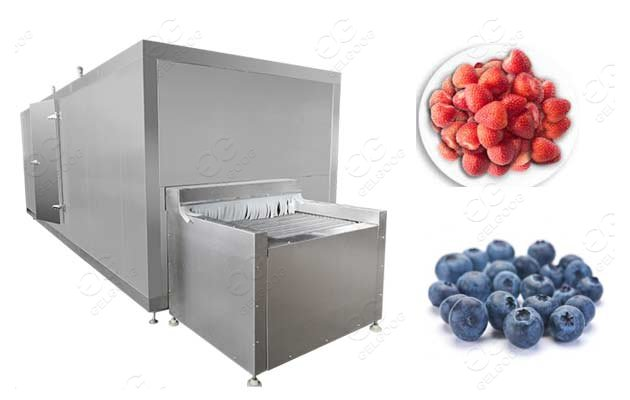 IQF Processing Line For Frozen Strawberry Supplier