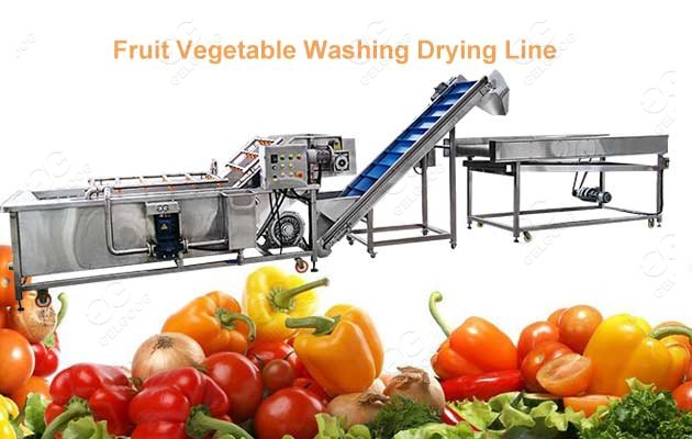 Fruit Vegetable Bubble Type Washing Drying Line GELGOOG Machinery
