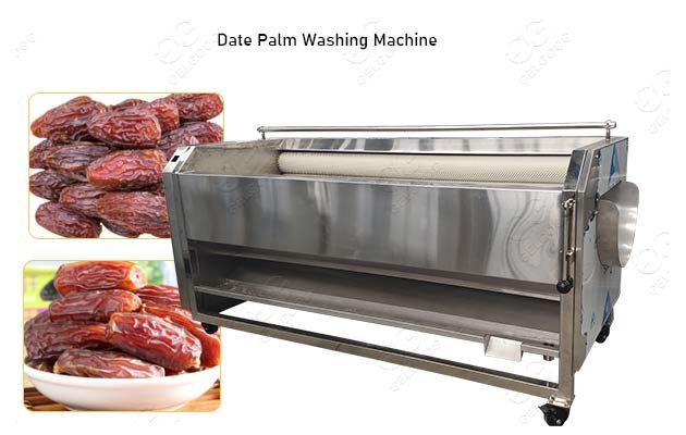 Palm Date Washing Machine Price|Date Cleaning Machine Hot Sale