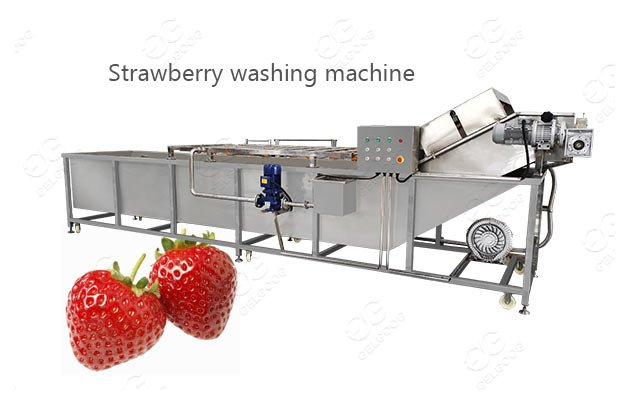 Strawberry Fruit Industrial Washing Cleaning Machine