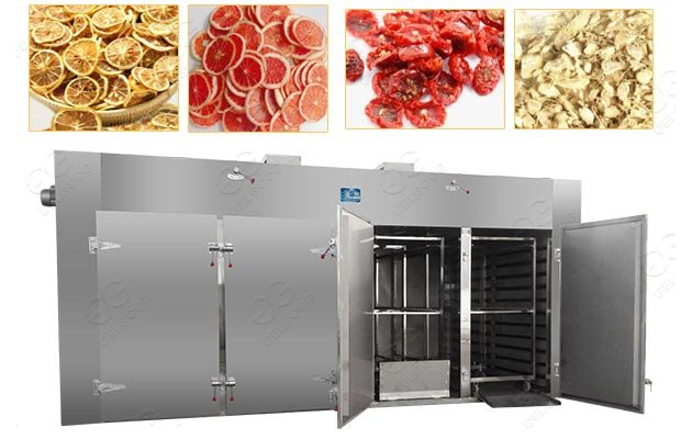 Dried Lemon Fruit Chips Processing Machine Supplier