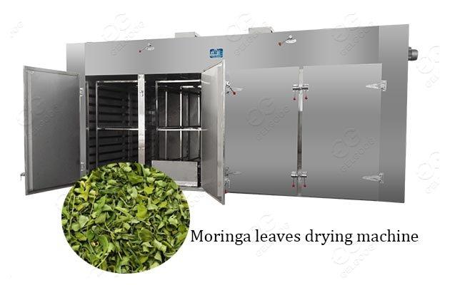 100kg Moringa Leaf Drying Dehydration Machine For Sale