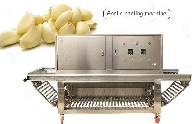 High Speed Garlic Peeling Processing Machine Manufacturer