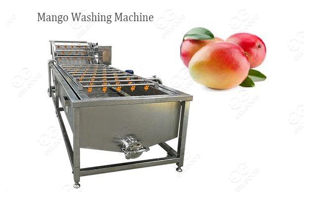 Industrial Mango Fruit Washing Machine Cost