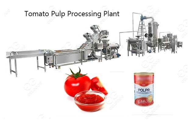 Tomato Puree Processing Plant Tomato Processing Solution Supplier