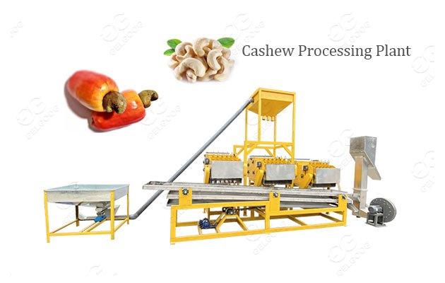 Advanced Cashew Shelling Processing Machine Line Price