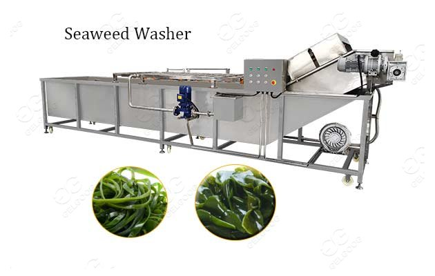 Bubble Type Seaweed Washing Cleaning Machine Supplier