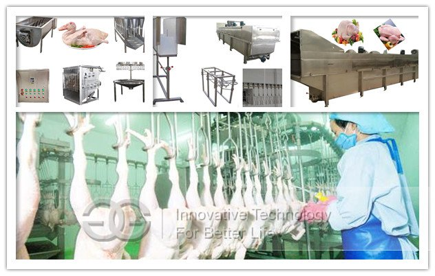 abattoir equipment