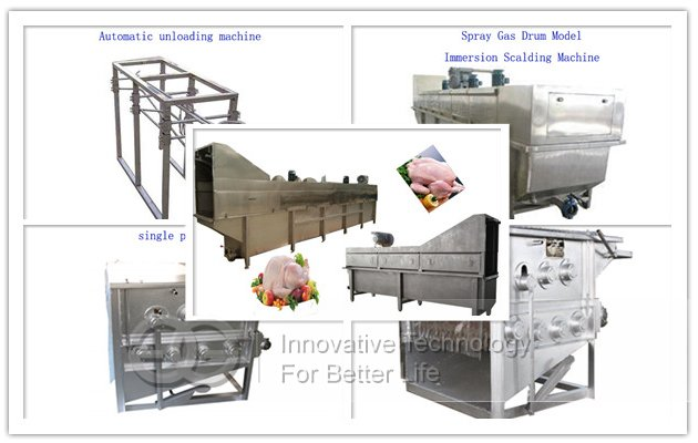 chicken Processing Machine