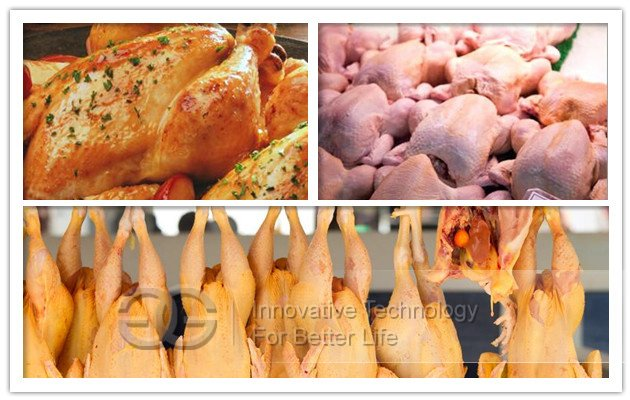 chicken slaughtering equipment