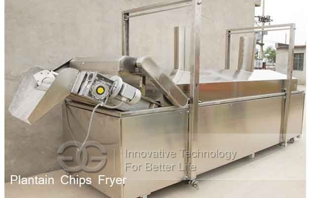 Automatic Plantain Chips Fryer