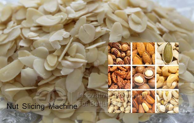 nut slicing machine price