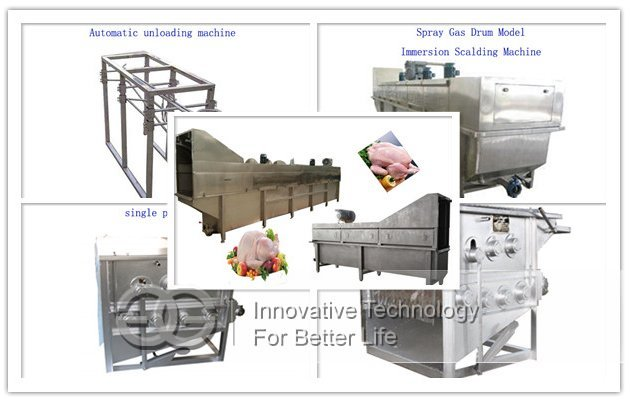 chicken abattoir equipment