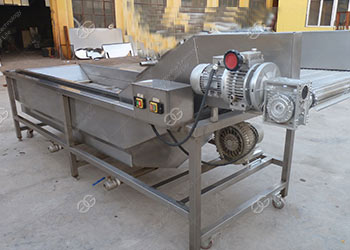 vegetable washing equipment