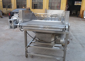 commercial fruit washing equipment