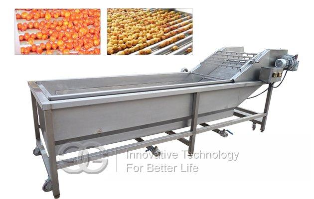 commercial flotation fruit washing equipment