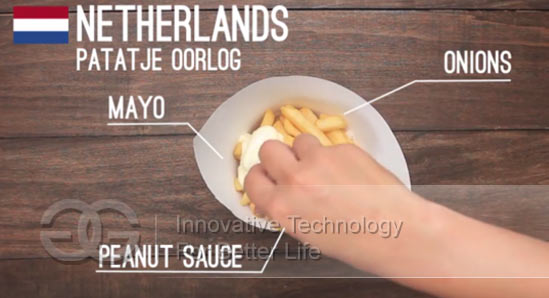 french fries in Netherlands