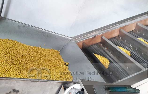 chickpea processing machine