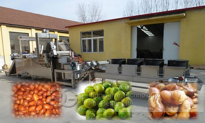 groundnut frying line