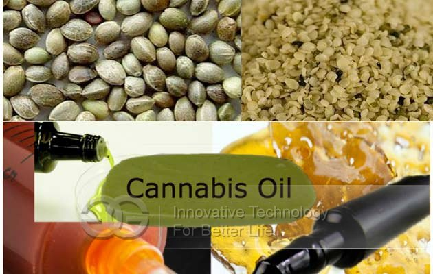Cannabis Oil manufacturing machine
