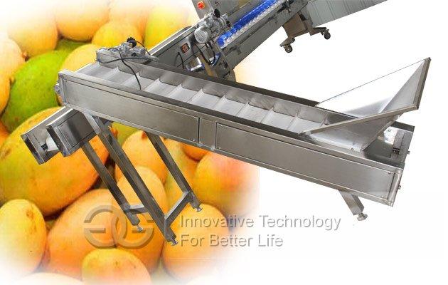 mango weight sorting machine
