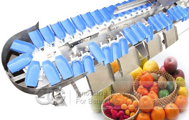 fruit weight sorting machine