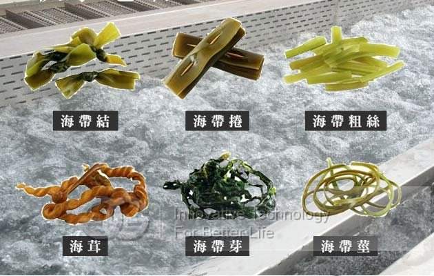 bubble type seaweed washing machine