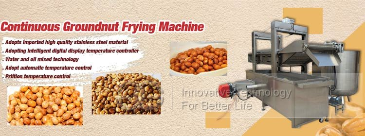 groundnut fryer machine