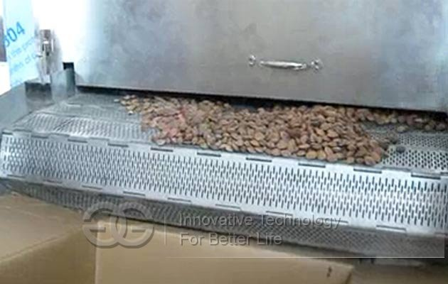 professional dry nuts roasting machine