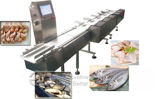 fish grading machine for sale