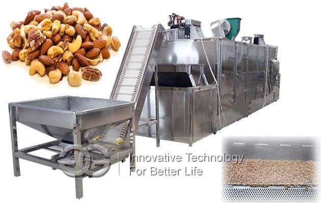 industrial nuts roasting line